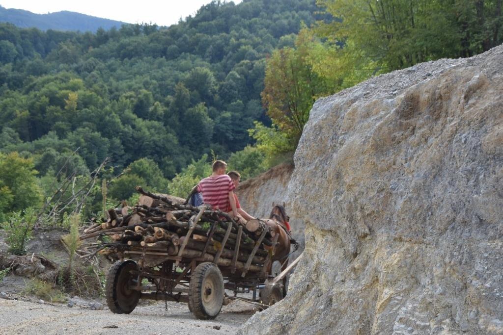 А вот и те, кто возит дрова. По горным дорогам иногда удобнее на лошадках