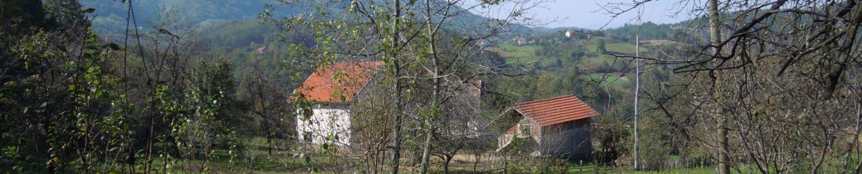 СЕРБСКИЕ ХРОНИКИ: Всё о Сербии